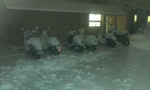 Una foto dei motorini del dormitorio dell'università