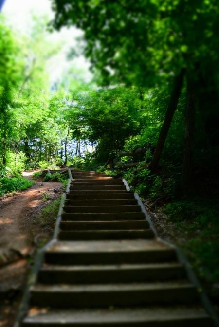 Qua tipo siamo ancora all'inizio del percorso e ci sono delle scale vere